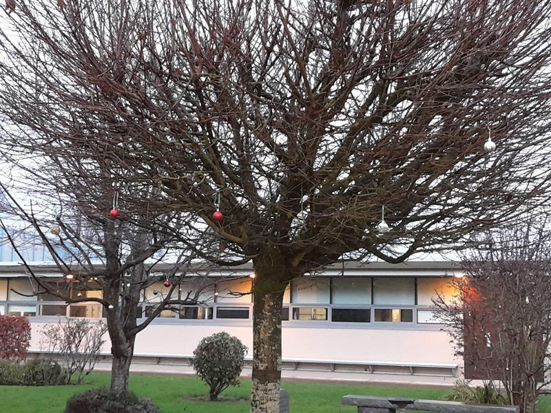 Christmas Pic 6.jpg