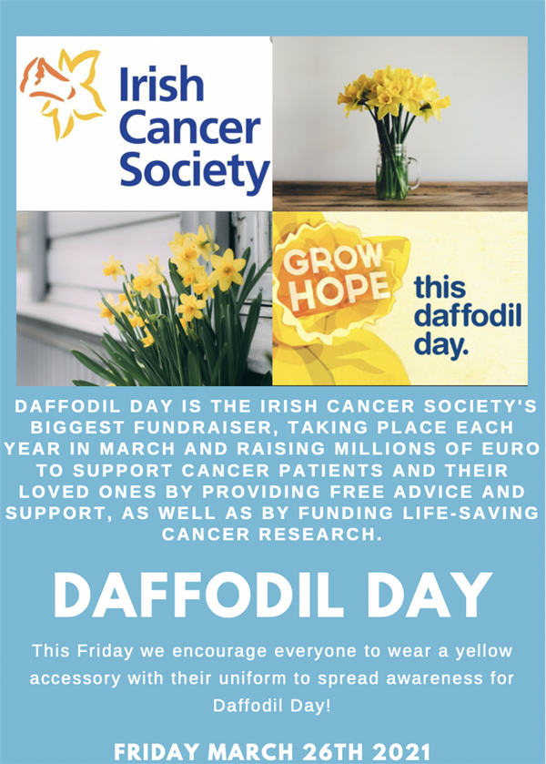 Daffodil Day Friday March 26th
